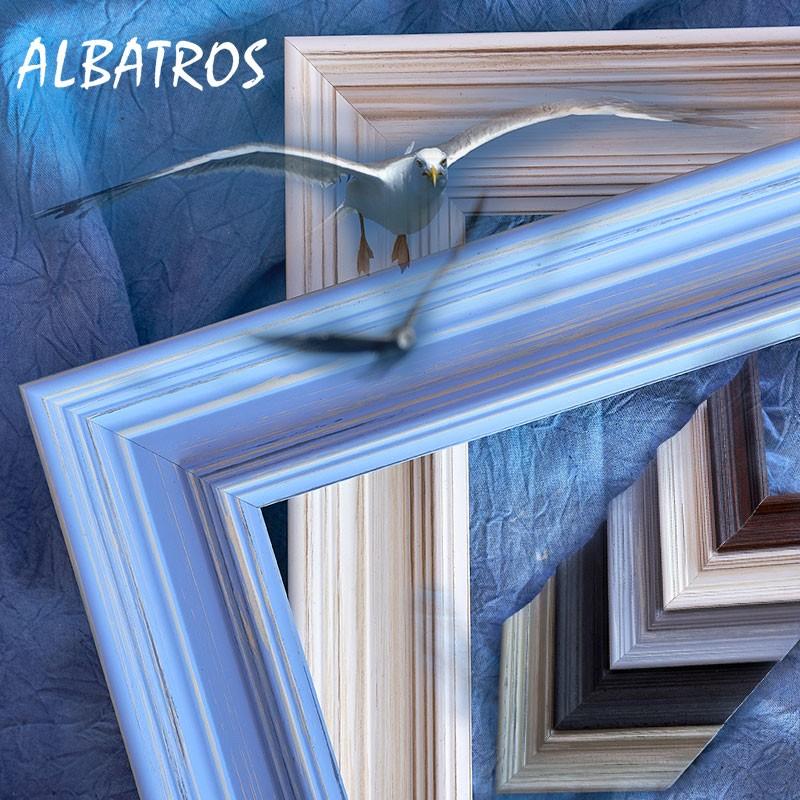 Albatros képkeret