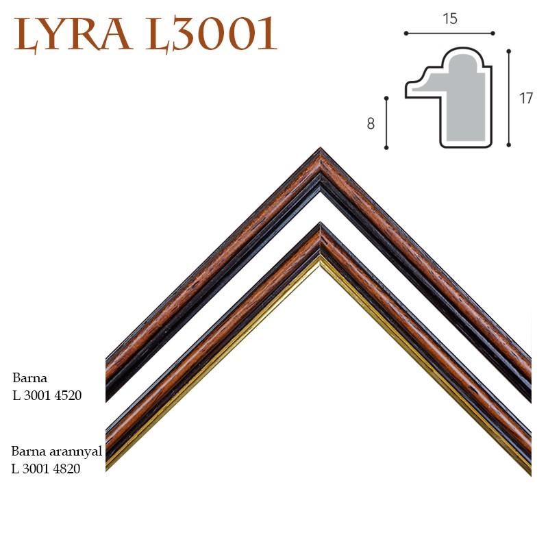 Lyra IV. képkeret