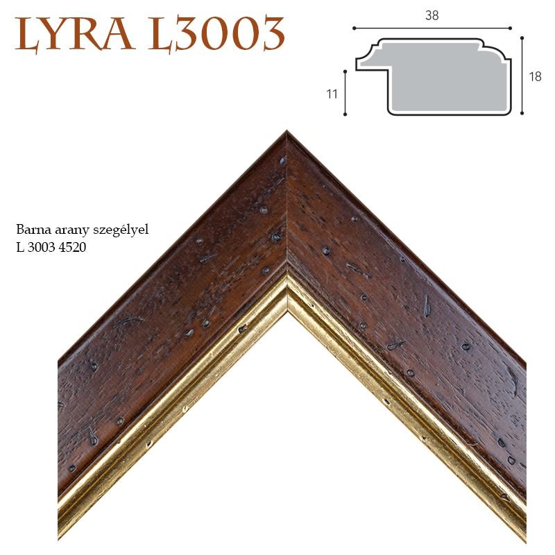 Lyra VI. képkeret