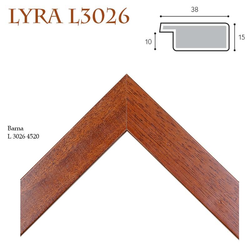 Lyra IX. képkeret