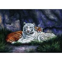 Keretezett művészi nyomat 47 x 67 cm